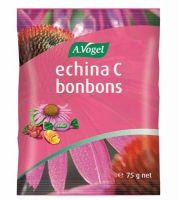 Bonboni Vogel echina C,75g